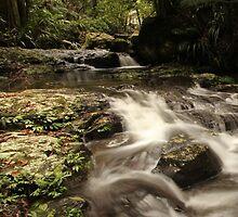 Rushing Waters by Mandy Gwan