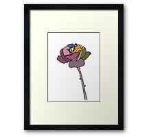 Coloured Rose Framed Print