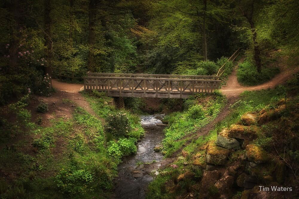 Bridge in Roundhay Park (HDR) by Tim Waters