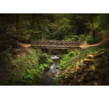 Bridge in Roundhay Park (HDR) Photographic Print