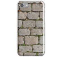 Grass Wall iPhone Case/Skin
