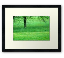 In A Green Field Framed Print