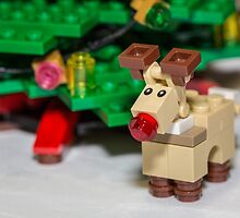 Red Nose Reindeer by garykaz