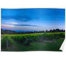 Le Vines in the Yarra Valley Poster