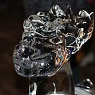 Ice carving by dsimon