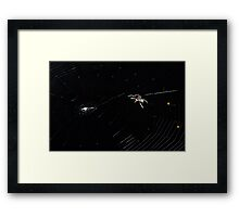 Spider IT - Web Building Framed Print