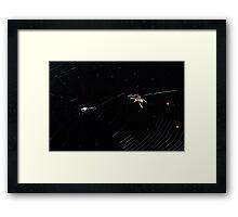 Spider IT - Web Building Framed Print