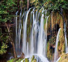 Waterfall in Autumn by Artur Bogacki