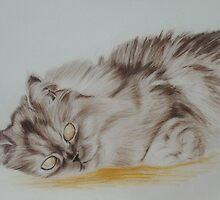 Hairy cat by Joerg Buettner