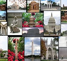 DC Delights by WalnutHill