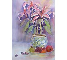 Potted Lilies with Fruit Photographic Print