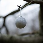 Bauble by Alex Florence