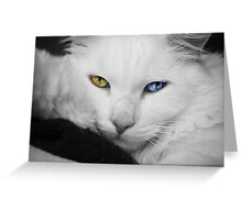 The most beautiful eyes Greeting Card