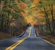 Clarks Valley Road - Autumn by Lori Deiter