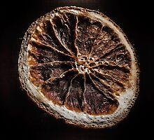 Citrus sinensis I by MikkoEevert