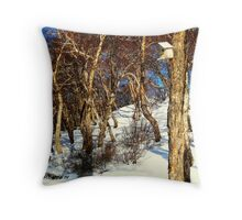 A Birds' House on Nikolskaya Hill, Petropavlovsk, Kamchatka, Russia.  Throw Pillow
