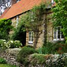 English village Cottage in summer light by StephenRB