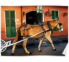 New Orleans French Quarter Mule Louisiana Artwork Poster