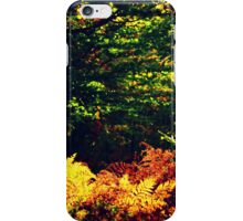 Natural Colors iPhone Case/Skin