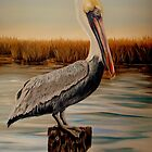 Wolf River Pelican by Phyllis Beiser