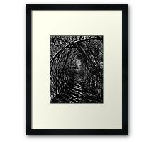 Willow Arch. Framed Print
