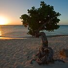 Tree and Sunset by George Oze