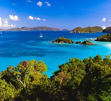 Trunk Bay Panorma by George Oze