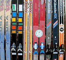 Ski Fence by catherinecachia