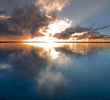 GLORY -Redland Bay Qld Australia by Beth  Wode