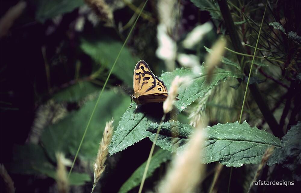 Butterfly #2 by rafstardesigns