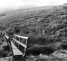 Bridge in Peak District by PMJCards