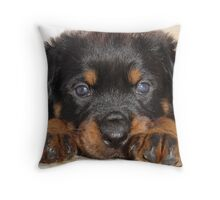 Female Rottweiler Puppy, Head Resting Between Paws Throw Pillow