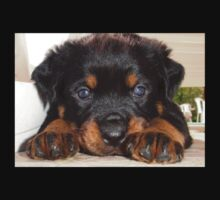 Female Rottweiler Puppy, Head Resting Between Paws One Piece - Long Sleeve