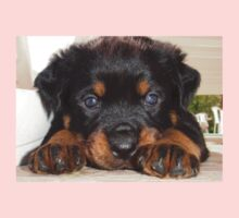 Female Rottweiler Puppy, Head Resting Between Paws One Piece - Short Sleeve