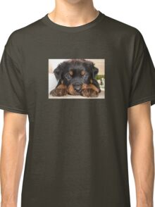 Female Rottweiler Puppy, Head Resting Between Paws Classic T-Shirt