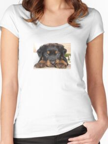 Female Rottweiler Puppy, Head Resting Between Paws Women's Fitted Scoop T-Shirt