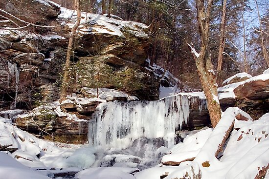 B. Reynolds Waterfall, Turning To Ice by Gene Walls