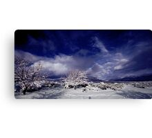 Palomino Valley North Canvas Print
