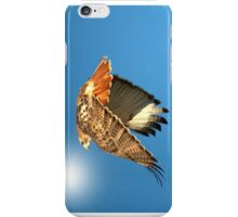 Red Tailed Hawk iPhone Case/Skin