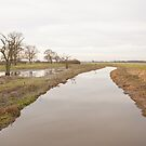River Torne by Imager