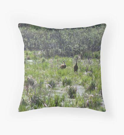 Sandhill Crane Habitat Throw Pillow