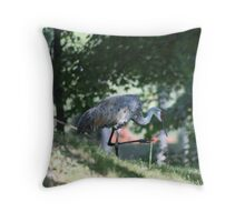 Sandhill Crane photographed in Oconomowoc Throw Pillow
