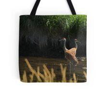 Sandhill Cranes Wading Tote Bag