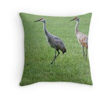 Sandhill Cranes in Grass Field Throw Pillow