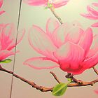 Magnolia Tree Blooms by amybcraft77