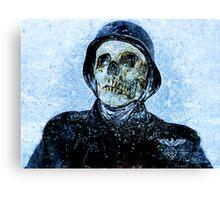 From the ice Canvas Print