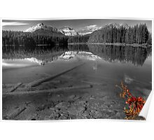 Splash of Red - Selective Coloring Poster