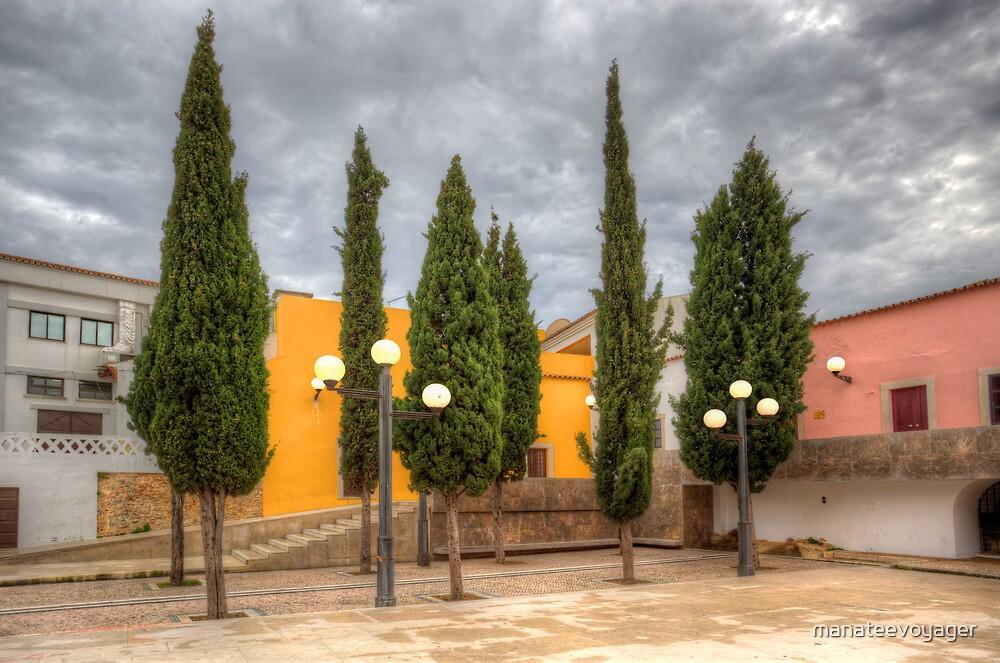 Loule Tree Garden by manateevoyager
