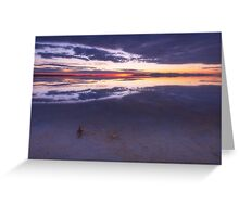 Lone Stick at Sunset Greeting Card