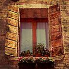 Venice window by Elemakar